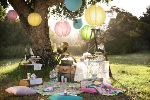 yoga picnic